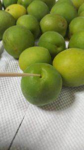 梅の実のヘタを竹串で取る