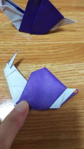 しっぽの伸びていない紫色のカタツムリ